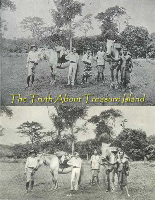 Cover of The Truth about Treasure Island