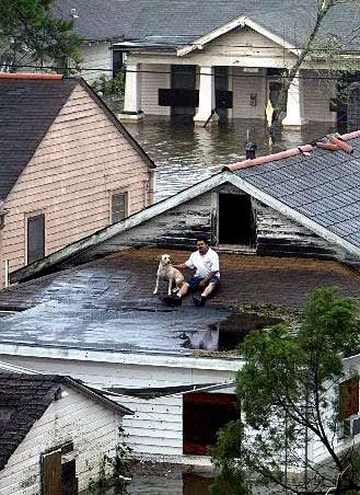 Hurricane Katrina waits with dog for help - USA - August 2005