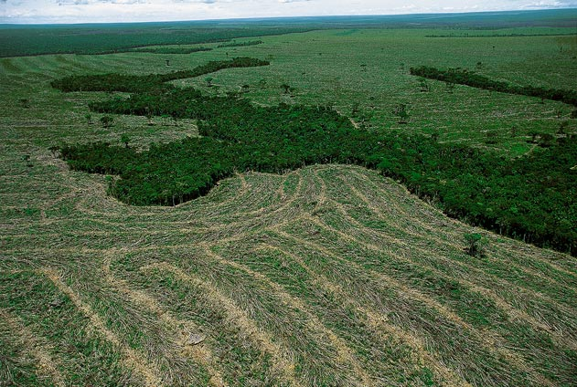 amazon deforestation Deforestation of the amazon is about to reach a threshold beyond which the region's tropical rainforest may undergo irreversible changes that transform the landscape into degraded savanna with .