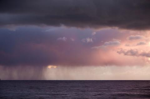 Purple Rain - Photography by Adam Rose
