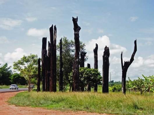 Memorial of Massacre of Eldorado dos Carajas - 17 April 1996