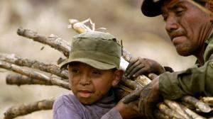 Father and Son - Slave Labor in Brazil