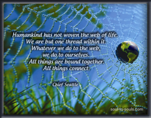 Web of Life Quote from Chief Seattle