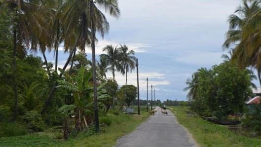 Dartmouth Village - Essequibo Coast - Guyana